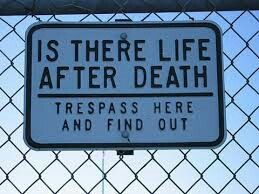 Is there life after death? Tress here and find out.