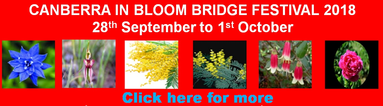 2018 Canberra in Bloom Amended